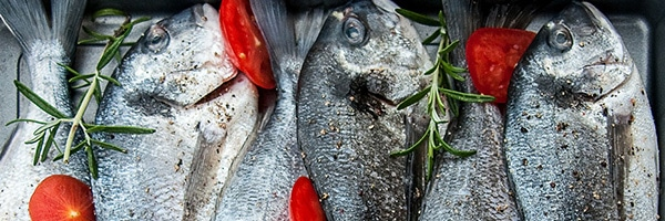 Best Vitamins for Skin - Omega 3 in Fish - The Wellnest by HUM Nutrition