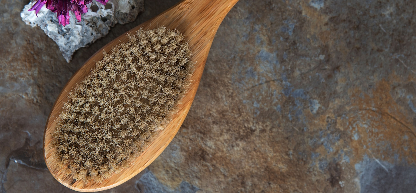 Overhead shot of dry brush that can help achieve glowing skin