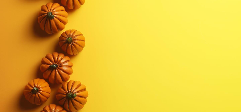 No-Bake Vegan Pumpkin Cheesecake - The Wellnest by HUM Nutrition