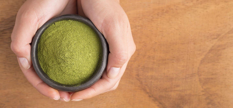 Woman holding bowl of green superfood moringa powder