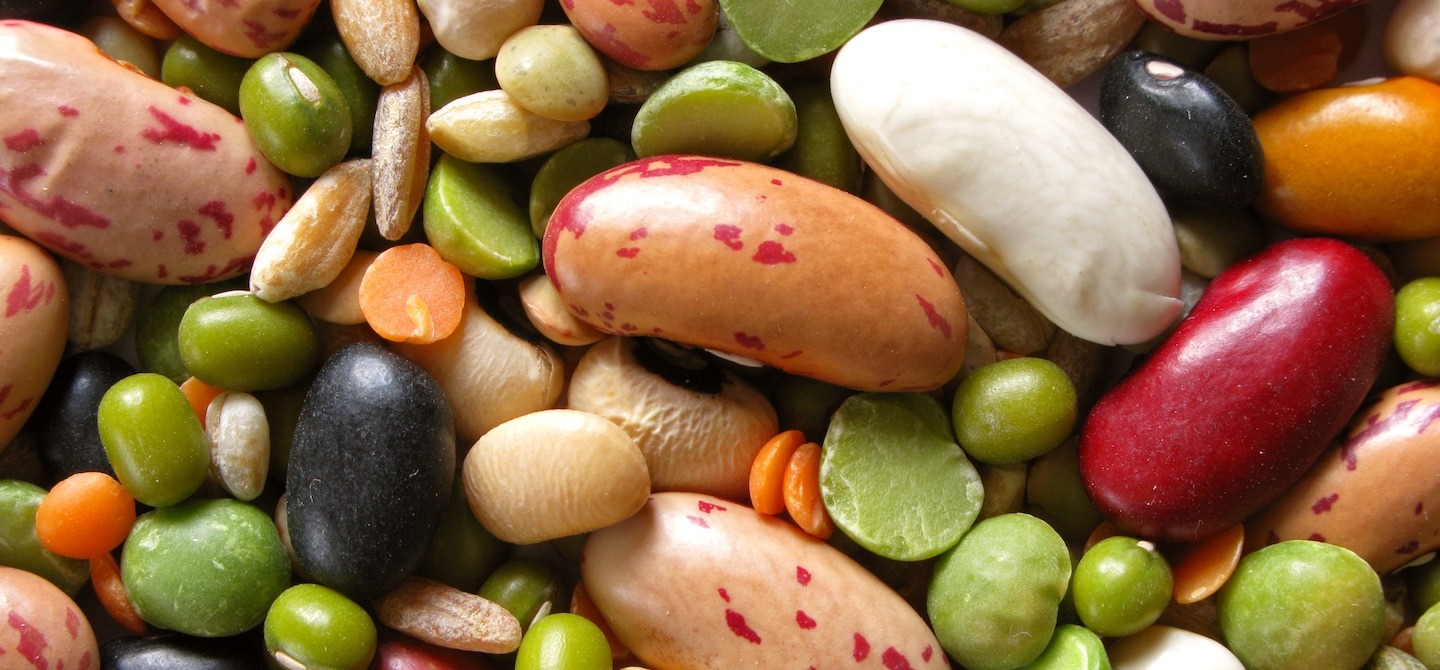 Bunch of beans and legumes for alkaline diet benefits