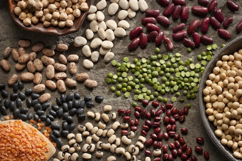 Legumes - Satiating Diet - The Wellnest by HUM Nutrition