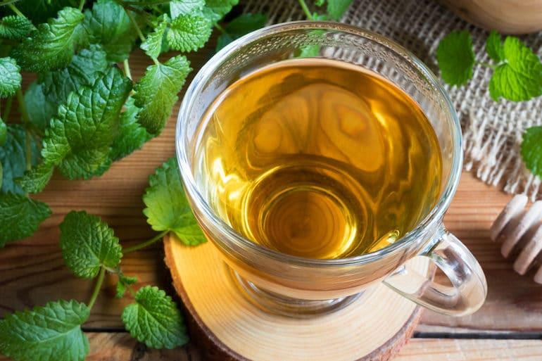 Lemon Balm Tea - Tea Benefits - The Wellnest by HUM Nutrition