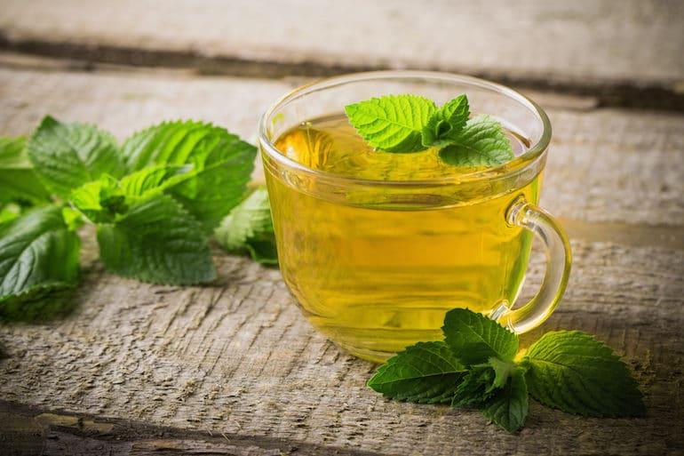Peppermint Tea - Tea Benefits - The Wellnest by HUM Nutrition