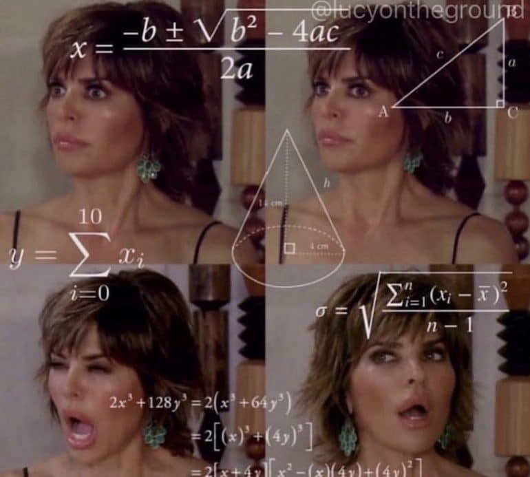Lisa Rinna Math Meme RHOBH - The Wellnest by HUM Nutrition