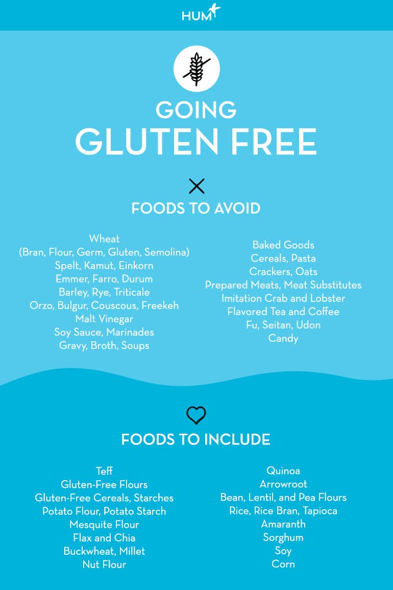 Gluten intolerance infographic - foods to avoid and gluten-free foods to eat