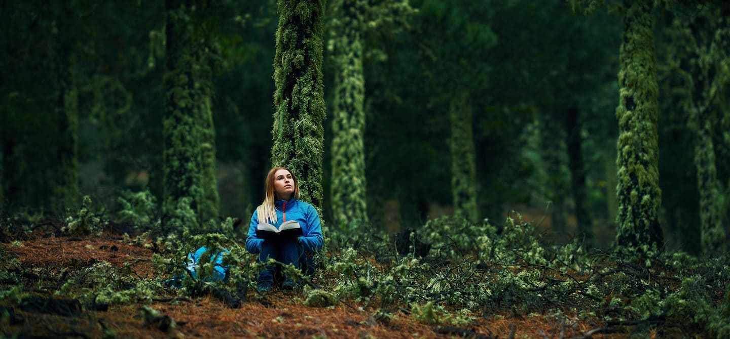 Woman journaling in solitude in forest