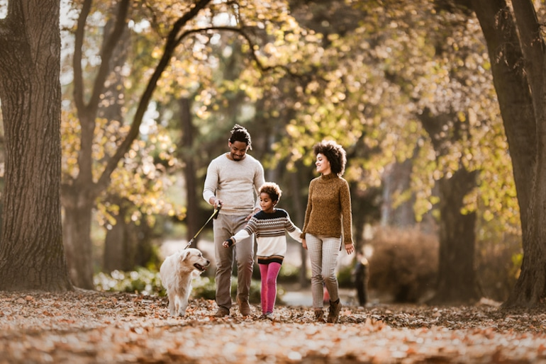 Smiling family of three walking the dog through leaves in the fresh air