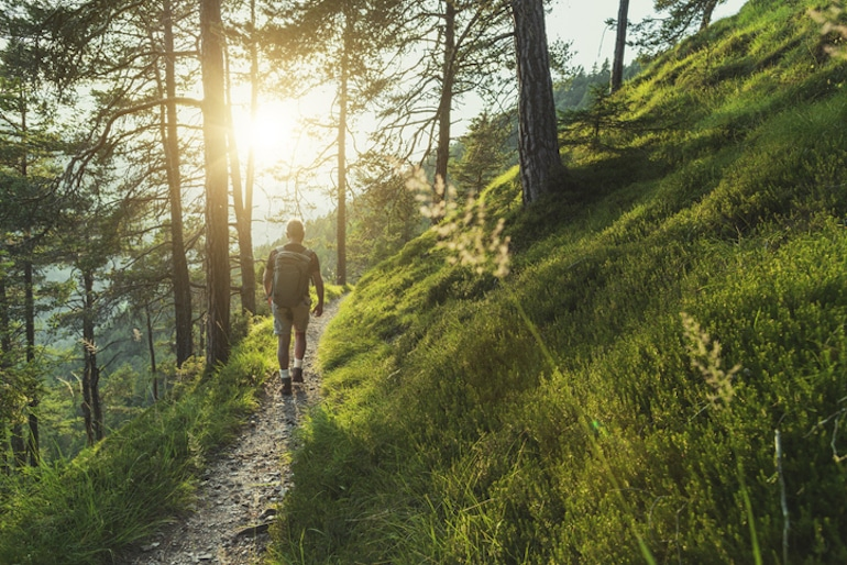 Man walking along forest hiking trail to reap rewards of nature and benefits of walking every day