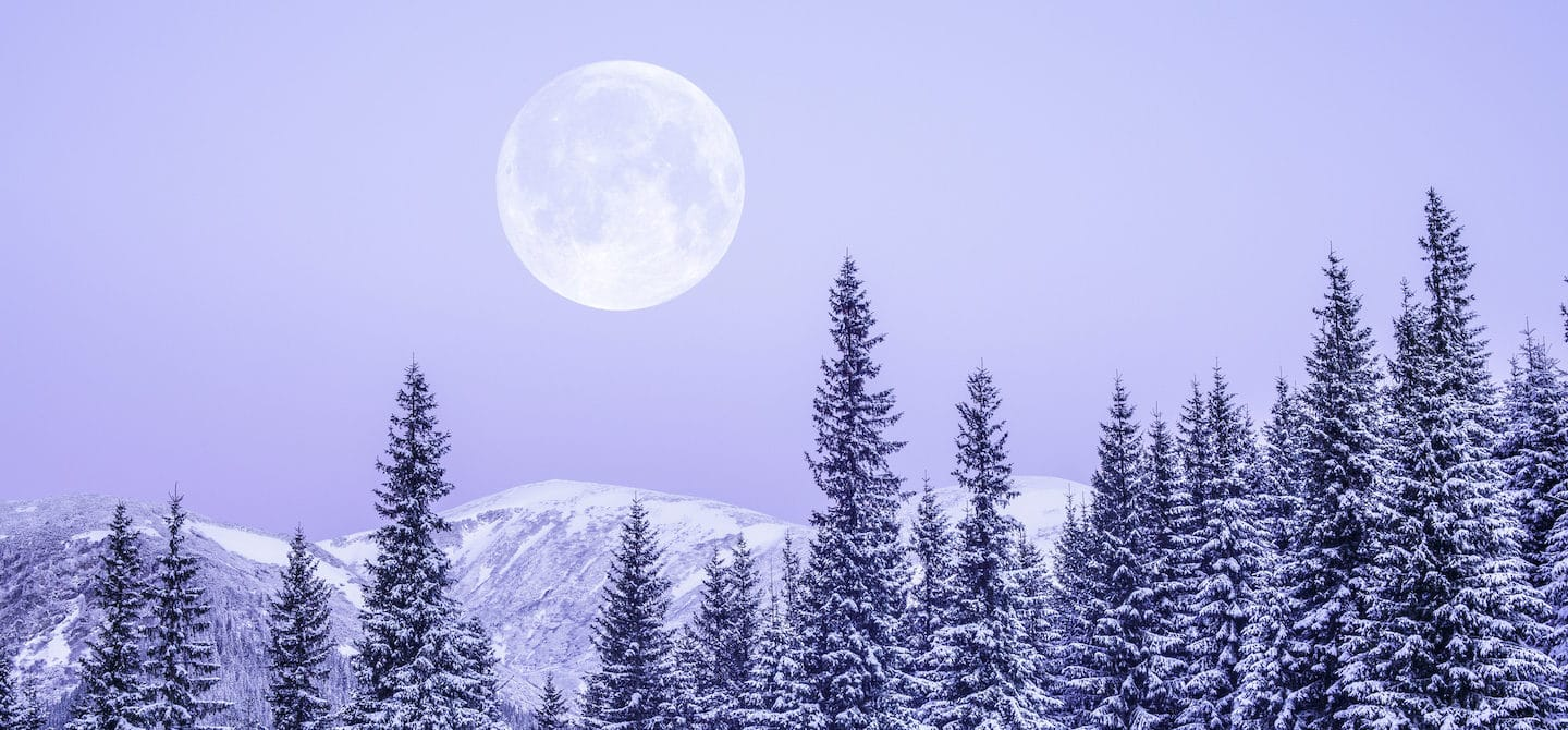 Snowy forest with full moon in purple sky for astrology and wellness horoscopes concept