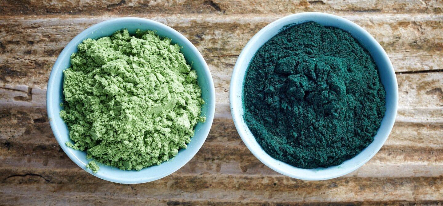 Chlorella vs. spirulina in powder form